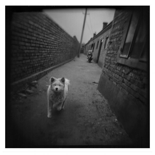 Art and Documentary Photography - Loading 004-ALLEMAN-INNER MONGOLIA-FOTOVISURA.jpg