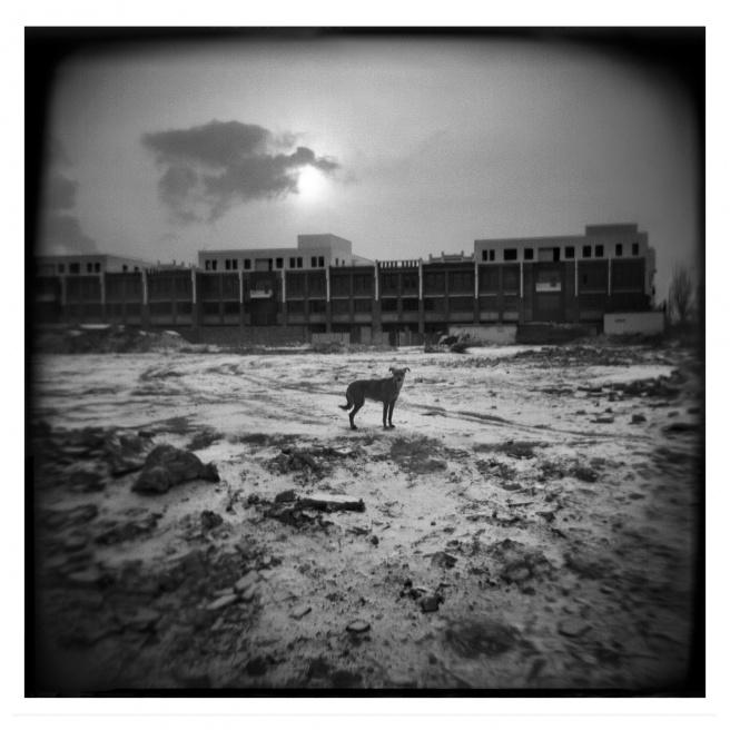 Art and Documentary Photography - Loading 012-ALLEMAN-INNER MONGOLIA-FOTOVISURA.jpg