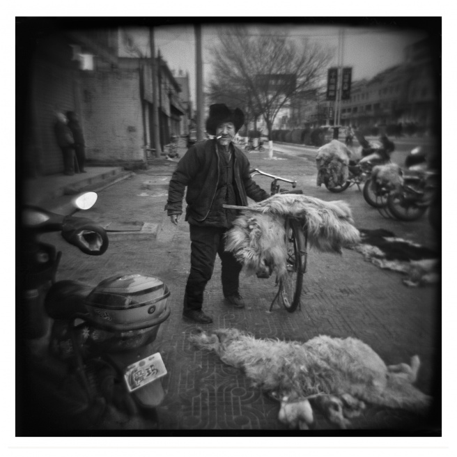 Art and Documentary Photography - Loading 023-ALLEMAN-INNER MONGOLIA-FOTOVISURA.jpg