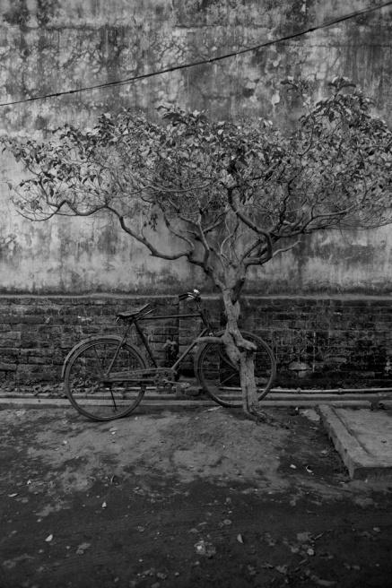 Art and Documentary Photography - Loading TanviMishra-006.jpg