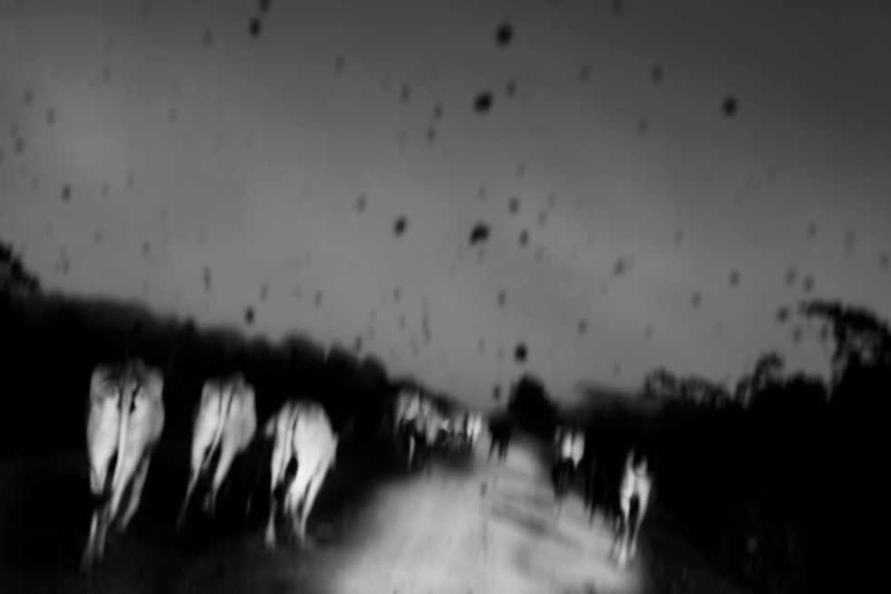 Art and Documentary Photography - Loading Nicolas Janowski-20.jpg