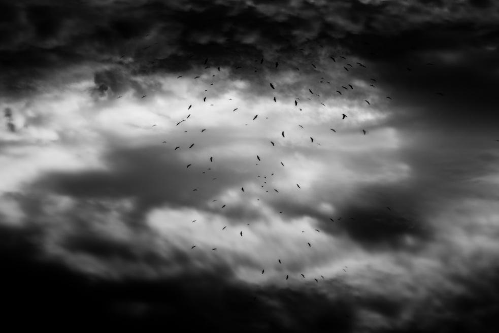 Art and Documentary Photography - Loading Nicolas Janowski-23.jpg