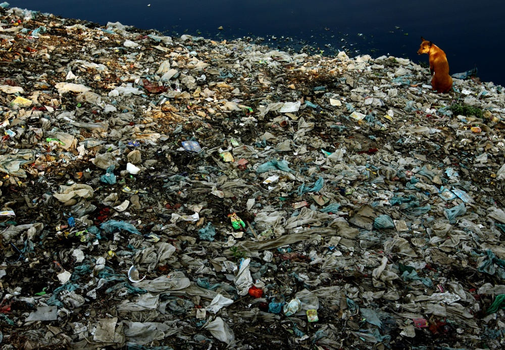 short essay on plastic pollution
