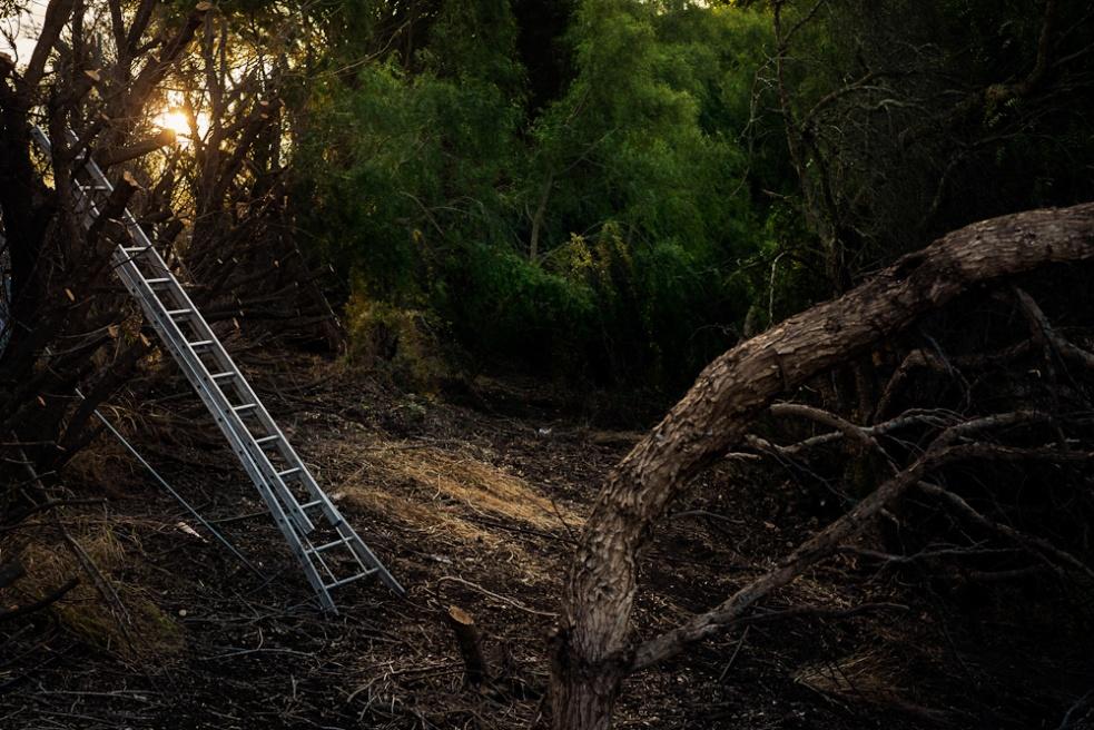 Art and Documentary Photography - Loading iwcl_shk_jdg-29.jpg